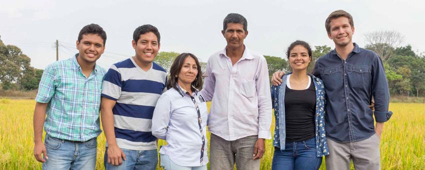 Estudiantes de la ESPOL desarrollaron un proyecto que incrementa el porcentaje de germinación del cultivo de arroz
