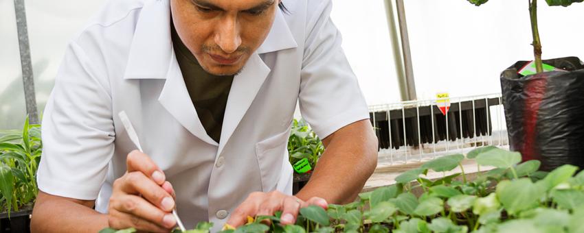 ESPOL integra la red de trabajo de Naciones Unidas para el desarrollo sostenible