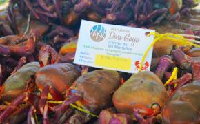Estudiantes de la ESPOL contribuyen al empoderamiento de comunidades cangrejeras