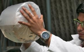 Politécnicos entregaron 4.000 alevines de Vieja Azul a pescadores del cantón Buena Fe